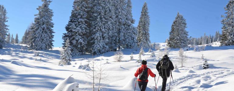 Diventeremo tutti sci alpinisti ?