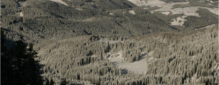 Uno ski pass, tanti vantaggi